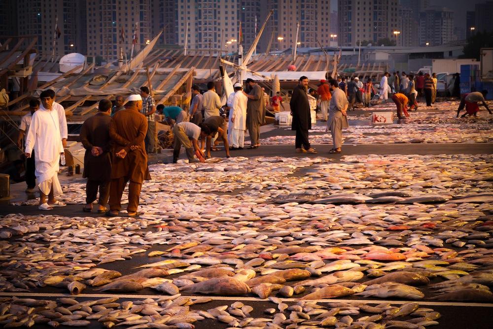 Фото рыбного рынка в ОАЭ