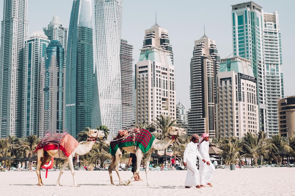 Фото развлечений в ОАЭ