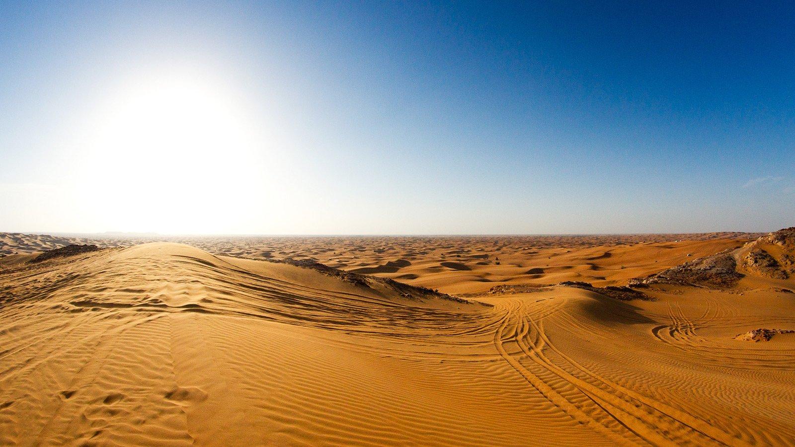 Куда сходить и что посмотреть в Дубае
