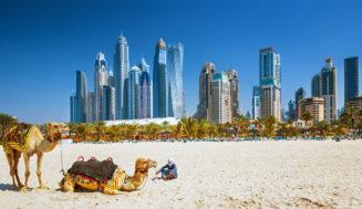 Куда поехать в ОАЭ в декабре