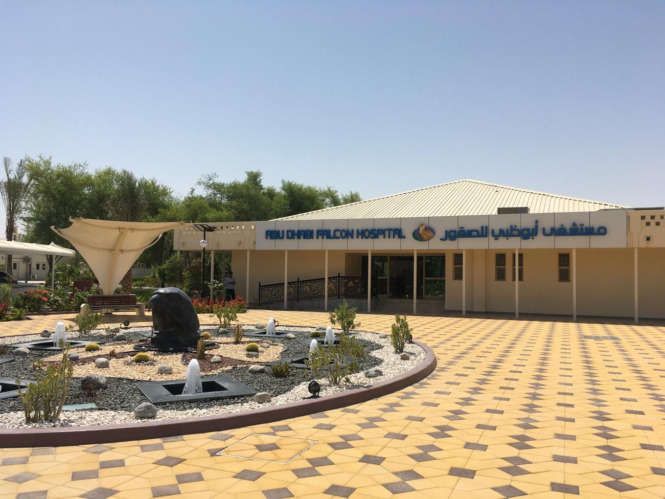 Соколиный госпиталь в Абу-Даби