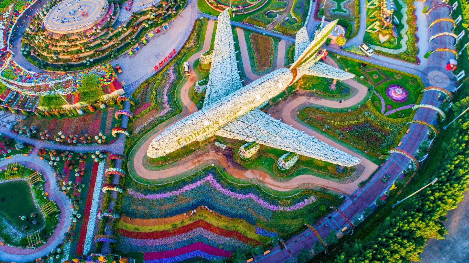Фото самолета в парке цветов