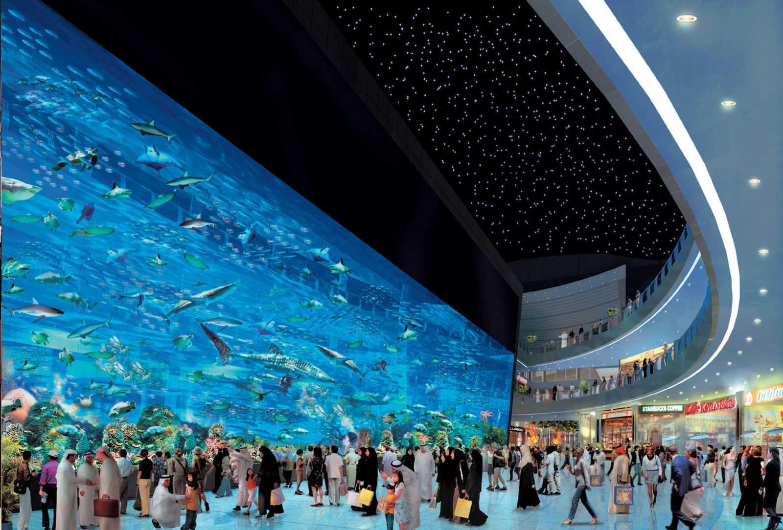 Режим работы аквариума в Дубай Молле